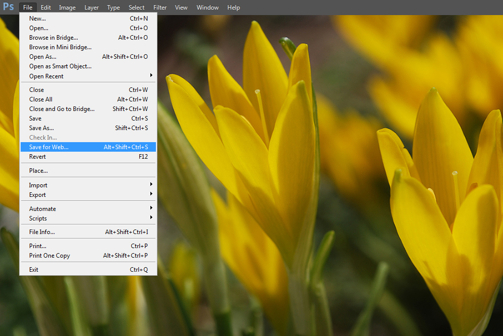 how to save small pdf in photoshop
